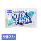 保冷剤 急速冷却パック 熱中症対策 クイックフリーズ 5個セット ポイント消化