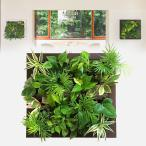 壁掛け観葉植物 ミドリエ デザイン 「フレーム グリート」