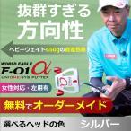 スパイダー型 ゴルフ パター ワールドイーグル F-01ア