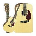 Martin マーティン DX1RAE Acoustic Electric Guitar エレクトリックアコースティックギター エレアコ