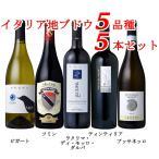 ショッピングイタリア ワインセット イタリア地ブドウのワイン5本セット 赤3本 白2本 送料無料 750ml×5本
