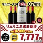 SALE  ワイン 福袋  赤ワインセット「F1」ポイヤック入り!ソムリエお年玉福袋・赤ワイン5本 送料無料 wine set 家飲み 飲み比べ