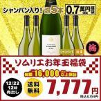 SALE  ワイン 福袋   スパークリングワインセット 「F3」シャンパン入り!ソムリエお年玉福袋・スパークリング5本 送料無料 wine set 家飲み 飲み比べ
