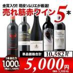 ショッピング赤 赤ワインセット 金賞入り 現役ソムリエの売れ筋赤ワイン5本セット 第3弾 送料無料 wine set