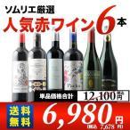 ソムリエ人気赤ワイン6本セット 第19弾 送料無料 赤ワインセット
