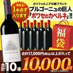 SALE  ワイン 福袋   赤ワインセット「F18」上級カベルネ入り!ソムリエ上質お年玉福袋・赤ワイン10本 送料無料 wine set 家飲み 飲み比べ