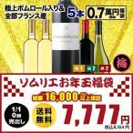 SALE  ワイン 福袋   ワインセット「F17」極上ポムロール入り!ソムリエ上質お年玉福袋・MIX5本 送料無料 wine set 家飲み 飲み比べ
