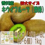 香川産 キウイフルーツ(香緑)特大1kg[送料無料♪]
