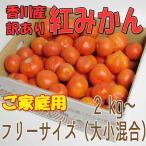 香川産 訳あり紅みかん 5kg箱(ご家庭用)