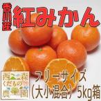香川産 紅ミカン 5kg箱【12月中旬より順次発送♪】(温州みかん 産地直送)