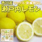 【予約販売】香川産 瀬戸内レモン2.5kg[2つ以上で送料無料♪](12月より発送!)