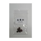 五葉松 種子