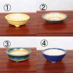 中国陶器鉢 約15cm