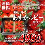 送料無料 あすかルビー 自社ファーム 朝採り いちご L〜2Lサイズ 300g 2パック 家庭用 おためし