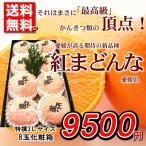 それはまさに最高級。愛媛県産『紅まどんな』3Lサイズ特撰8玉化粧箱 発送時期:12月上旬〜1月上旬【お歳暮】