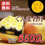 りんご 送料無料 ぐんま名月 長野県安曇野産 秀品 16玉 化粧箱 あまい 贈答用 家庭用 おためし