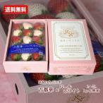 いちご 送料無料 紅白いちご 古都華 パールホワイト L〜2Lサイズ 化粧箱 奈良県 奈良いちごラボ 贈答用 おためし