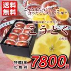 りんご 送料無料 こうとく 山形県産 特撰8玉 化粧箱  蜜入り 贈答用 家庭用 お歳暮 おためし