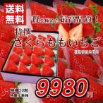 いちご 送料無料 さくらももいちご 徳島県産 特撰 20玉化粧箱 お歳暮ギフト 贈答用 おためし