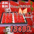 いちご 送料無料 さくらももいちご 徳島県産 特撰 30玉化粧箱 お歳暮ギフト 贈答用 おためし