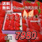 いちご 送料無料 さくらももいちご 徳島県産 特撰 15玉化粧箱 お歳暮ギフト 贈答用 おためし