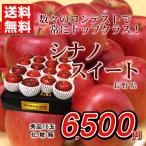 りんご 送料無料 シナノスイート 長野県産 秀品 16玉 化粧箱 あまい 贈答用 家庭用 おためし