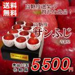 りんご 送料無料 高糖度 サンふじ 秀品12玉 青森県黒石産 化粧箱 贈答用 家庭用 おためし