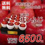 りんご 送料無料 サンふじ 長野県産 高糖度 秀品16玉 化粧箱 贈答用 家庭用 お歳暮 おためし