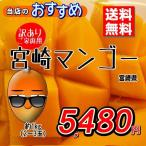 送料無料 訳ありマンゴー 宮崎県産 訳あり マンゴー 完熟 約1kg 2〜3玉 家庭用限定 ちょい悪 おためし
