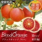 宇和島の山と海が育んだイタリアが薫る赤い真珠 ブラッドオレンジ モロ Mサイズ 5kg bloodorange オレンジ イタリア JAえひめ南