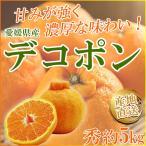 甘みが強いほどよい酸味があり濃厚な味わいを楽しめる 愛媛県産 不知火 デコポン 秀 L 2L 3Lサイズ えひめ南農協 柑橘 みかん