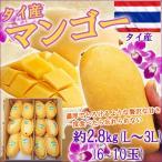マンゴー タイ産フレッシュマンゴー ナムドクマイ  マハチャノク 完熟 約2.8kg 6~10玉  予約販売  thailand fresh mango thai