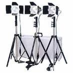 LPL ビデオライティングキット3B L27433