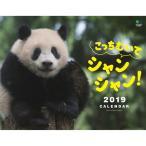 えい出版社 カレンダー2019 こっちむいてシャンシャン 9105155 (直送品)