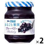 お試しサイズアヲハタ まるごと果実 ブルーベリー 125g 1セット(2個入)