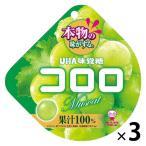 UHA味覚糖 コロロ マスカット 3袋
