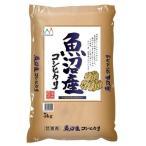 精白米 新潟県魚沼産コシヒカリ 5kg 令和元年産 米