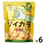 大塚製薬 ソイカラ オリーブオイルガーリック味 6袋