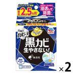 カビ防止 予防 らくハピ お風呂カビーヌ 黒カビ 生やさない! 無香性 1セット(2個) 浴室 アース製薬