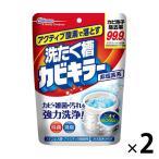 カビキラー 洗たく槽カビキラー 粉末タイプ 250g 1セット(2個入)ジョンソン