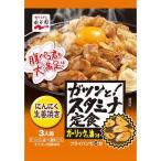 永谷園 ガツンと スタミナ定食 にんにく生姜焼き 1個