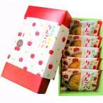 十勝製菓 北海道りんごパイ ギフトBOX 1箱