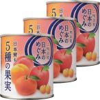 明治屋 日本のめぐみ 日本育ち 5種の果実 1セット(3個)
