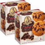 森永製菓 ステラ チョコチップクッキー 4枚 a23587