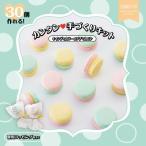 フロンティア企画 手作りキット キャンディカラーのプチマカロン 1個