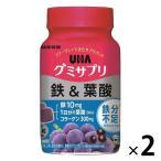 UHAグミサプリ 鉄&葉酸 ボトル�