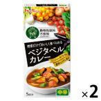 アウトレットハウス食品 ベジタベルカレー (カレールウ/中辛) 1セット(5皿分×2個) 動物性原料不使用(乳原料除く)