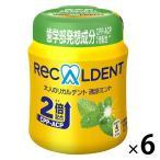 モンデリーズ 大人のリカルデント 清涼ミントボトルR 1セット(6個)