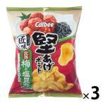カルビー 堅あげポテト 匠味 完熟梅と塩昆布味 73g 12袋