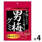 ノーベル 男梅グミ 38g 1セット(4袋)